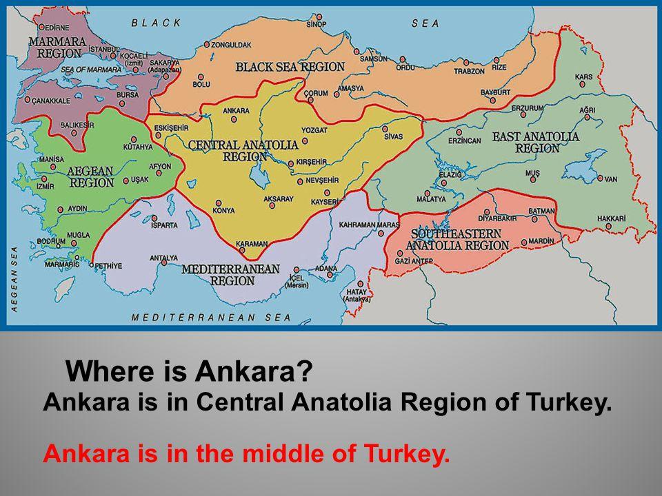 Where is Van Van is in Eastern Anatolia Region of Turkey. Van is in the east of Turkey.