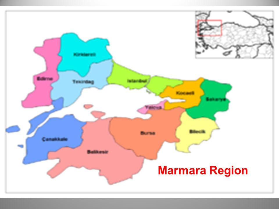 Marmara Region Aegean Region Southeastern Anatolia Region Central Anatolia Region Eastern Anatolia Region Black Sea Region Mediterranean Region