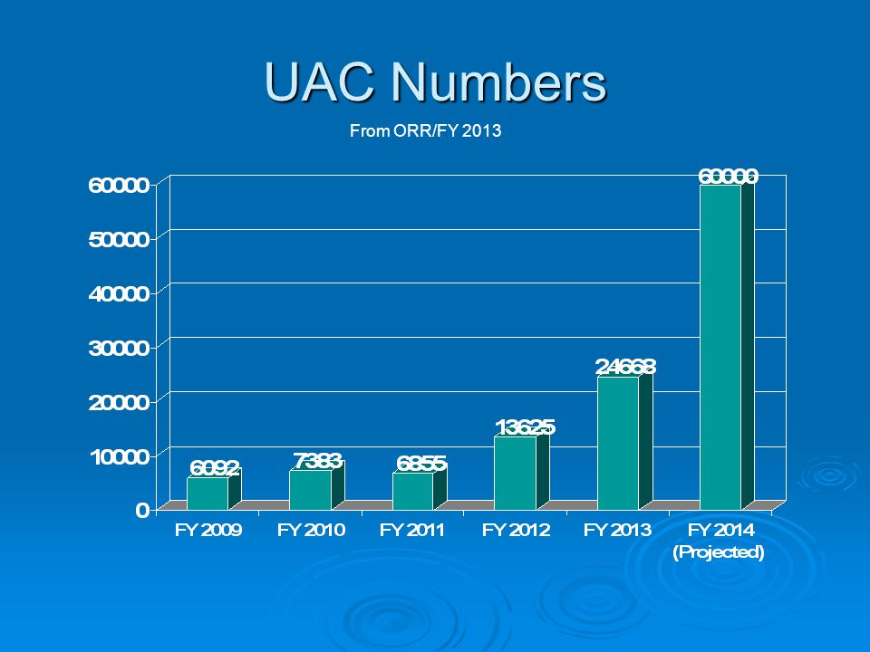 UAC Numbers From ORR/FY 2013
