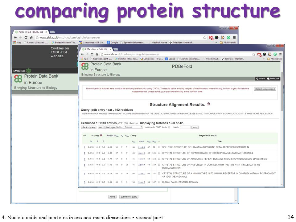 4. Nucleic acids and proteins in one and more dimensions - second part 14 comparing protein structure