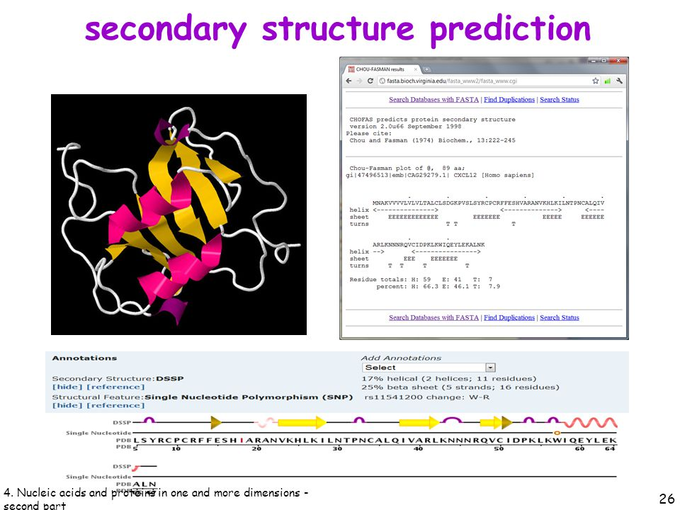 secondary structure prediction 26 4.