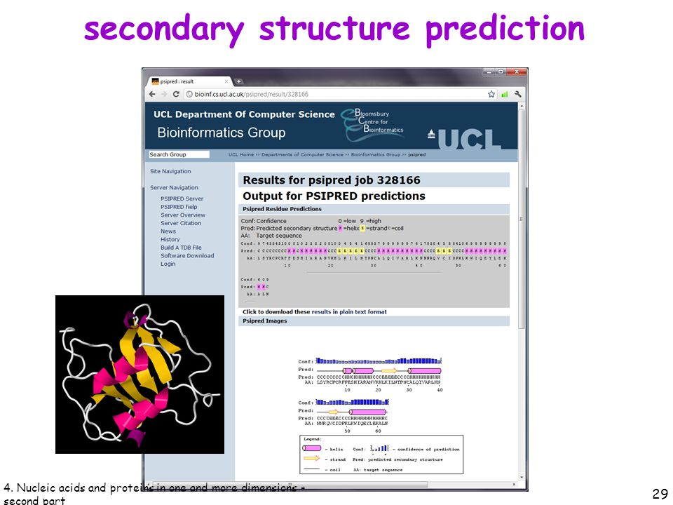 secondary structure prediction 29 4.