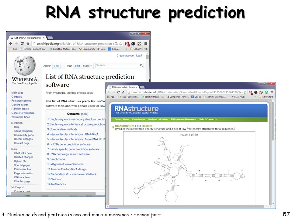 4. Nucleic acids and proteins in one and more dimensions - second part 57 RNA structure prediction