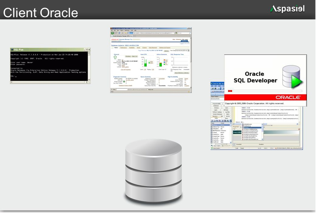 65 Client Oracle
