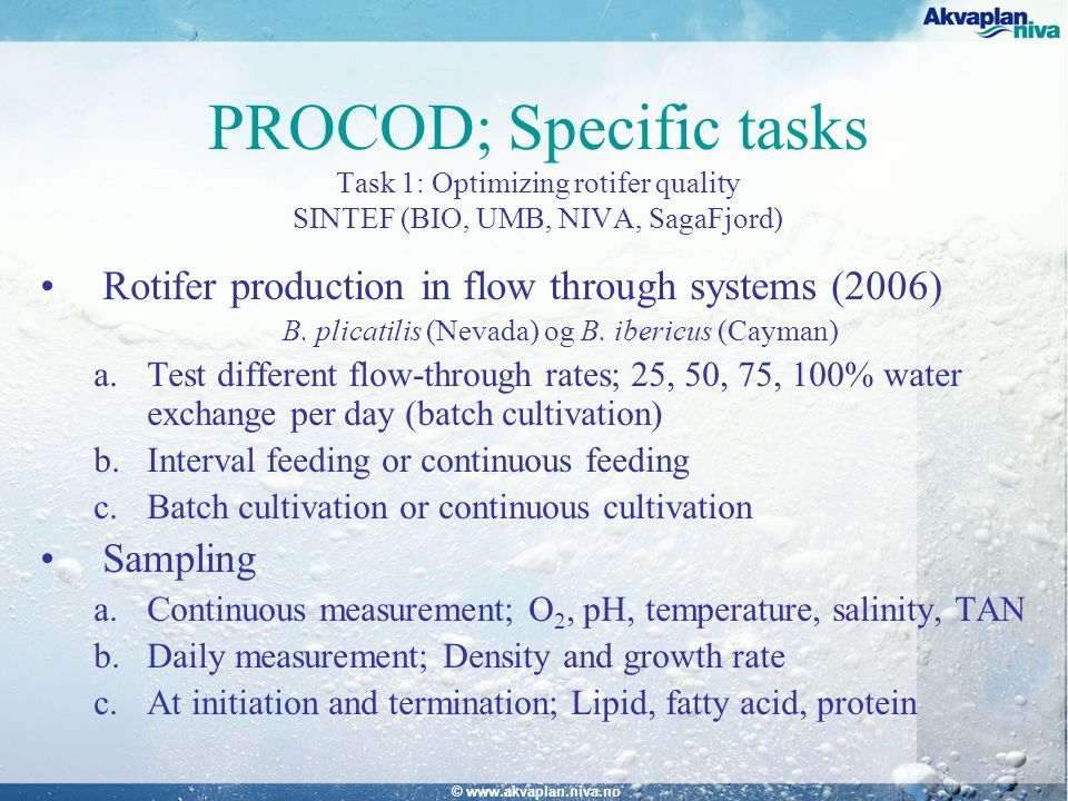 © www.akvaplan.niva.no PROCOD; Specific tasks Task 1: Optimizing rotifer quality SINTEF (BIO, UMB, NIVA, SagaFjord) Rotifer production in flow through systems (2006) B.