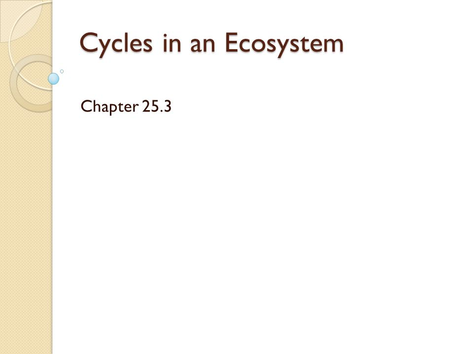 Cycles in an Ecosystem Chapter 25.3
