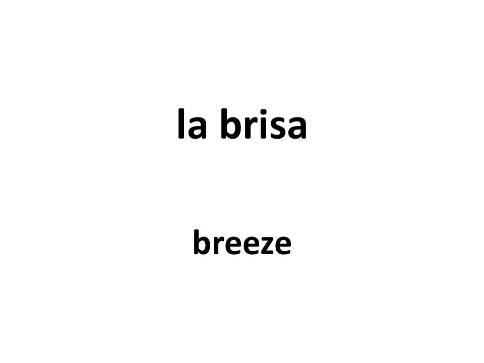 la brisa breeze