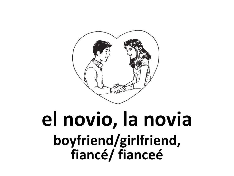 el novio, la novia boyfriend/girlfriend, fiancé/ fianceé