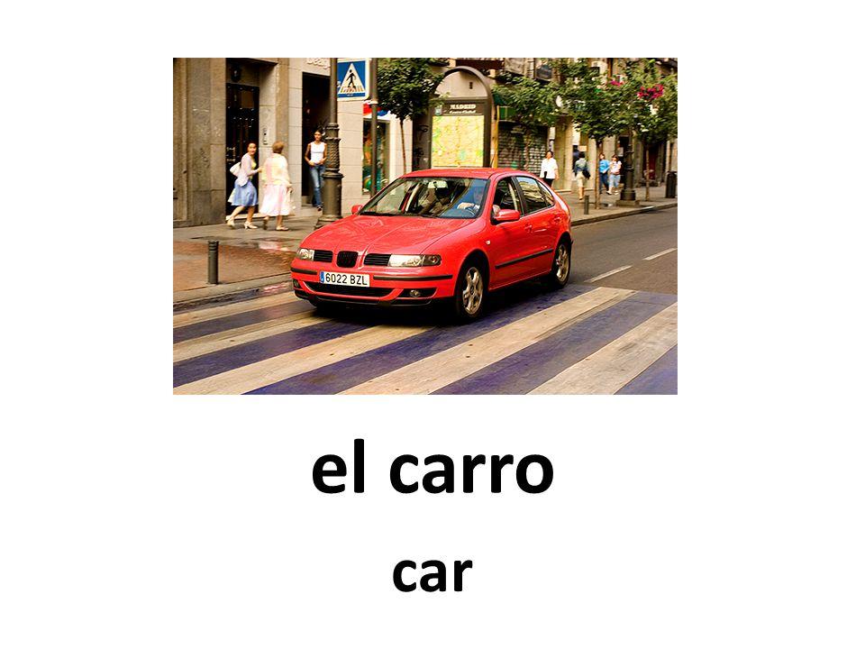 el carro car