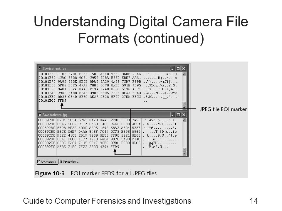 Guide to Computer Forensics and Investigations14 Understanding Digital Camera File Formats (continued)