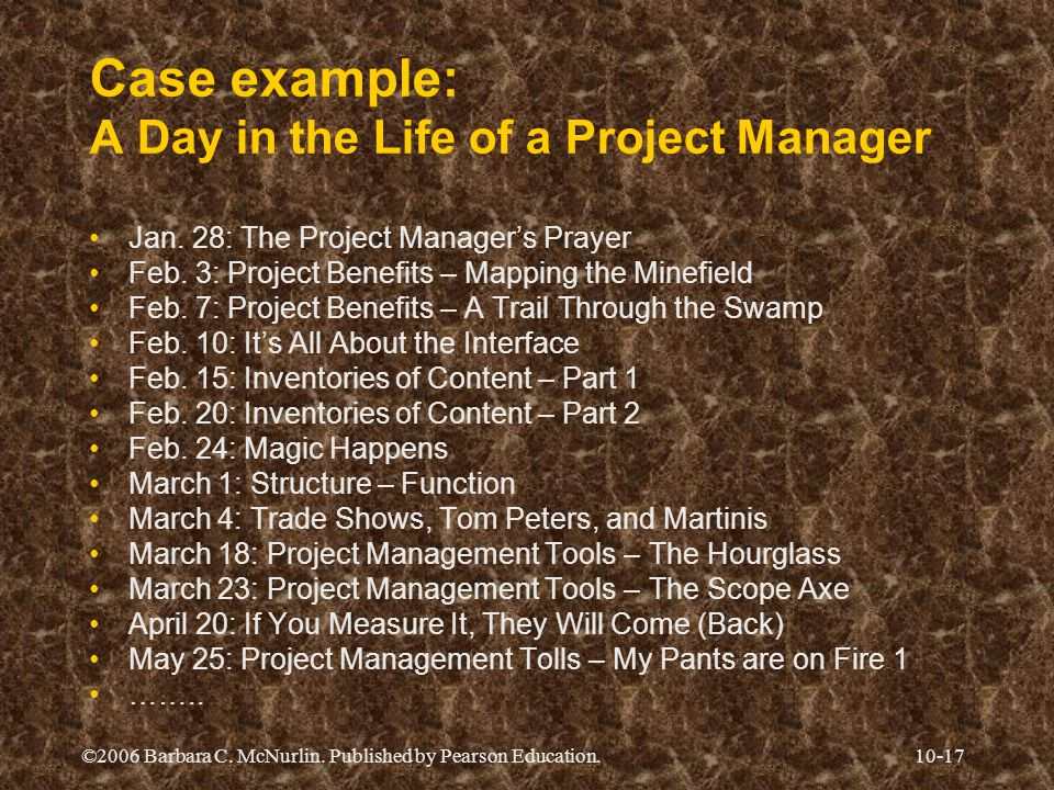 ©2006 Barbara C. McNurlin. Published by Pearson Education.10-17 Case example: A Day in the Life of a Project Manager Jan. 28: The Project Manager's Pr