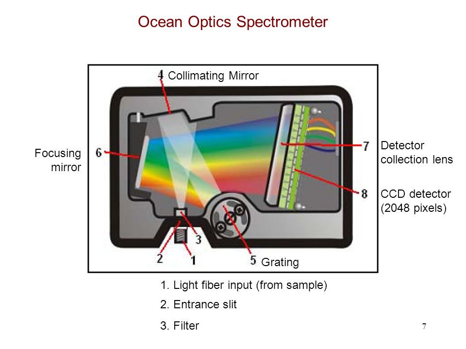 7 Ocean Optics Spectrometer 1. Light fiber input (from sample) 2. Entrance slit 3. Filter Collimating Mirror Grating Focusing mirror Detector collecti