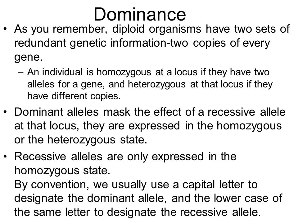 Dominance As you remember, diploid organisms have two sets of redundant genetic information-two copies of every gene. –An individual is homozygous at