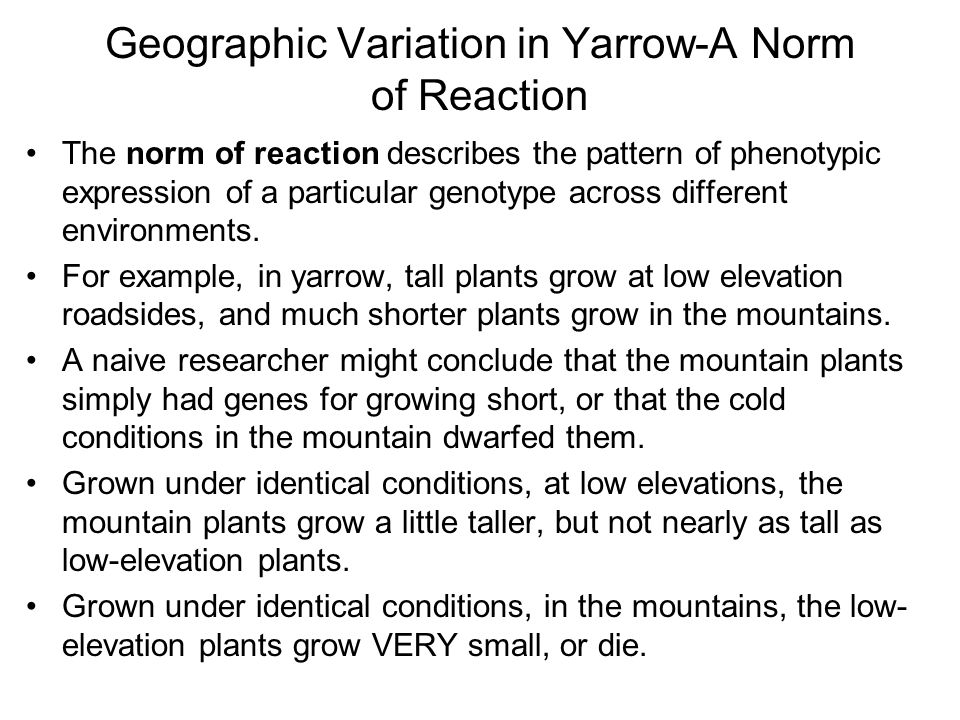 Geographic Variation in Yarrow-A Norm of Reaction The norm of reaction describes the pattern of phenotypic expression of a particular genotype across different environments.