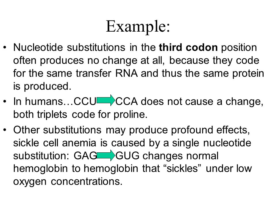 Example: Nucleotide substitutions in the third codon position often produces no change at all, because they code for the same transfer RNA and thus th