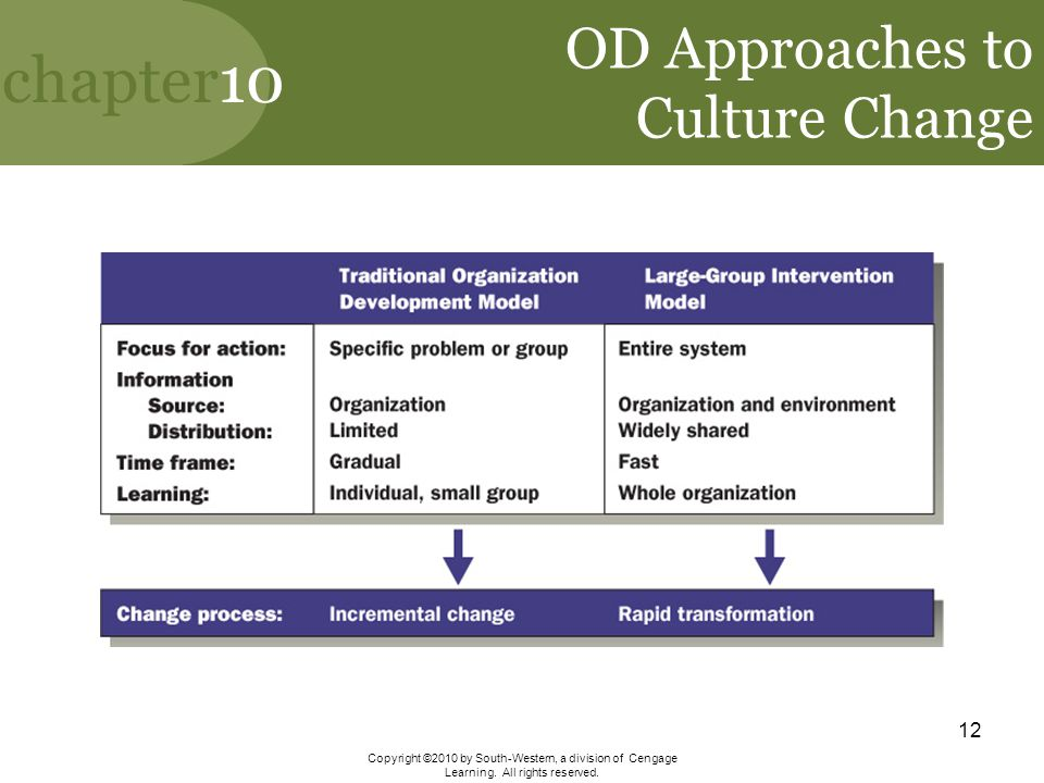 chapter10 Copyright ©2010 by South-Western, a division of Cengage Learning. All rights reserved. 12 OD Approaches to Culture Change