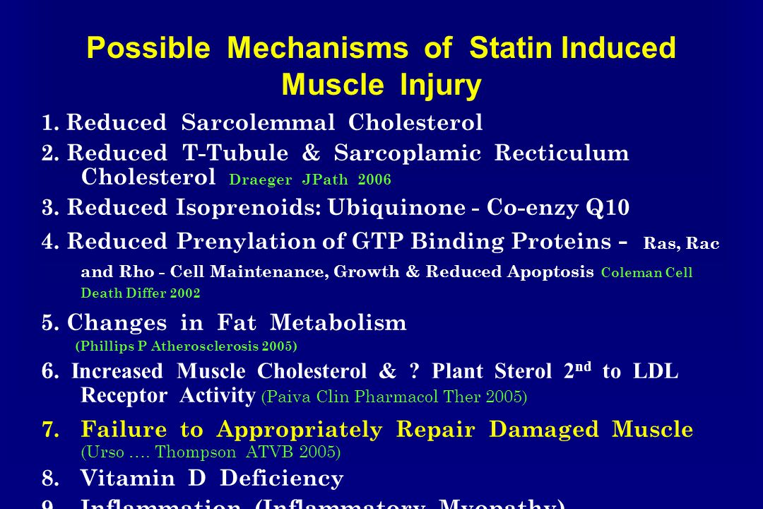 Possible Mechanisms of Statin Induced Muscle Injury 1.