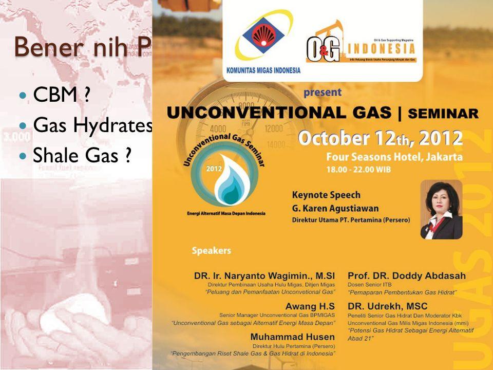 Bener nih Punya Prospek..? CBM ? Gas Hydrates ? Shale Gas ?