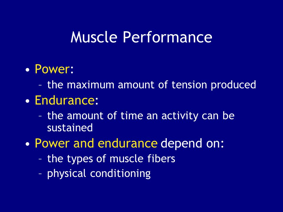 Muscle Performance Power: –the maximum amount of tension produced Endurance: –the amount of time an activity can be sustained Power and endurance depend on: –the types of muscle fibers –physical conditioning