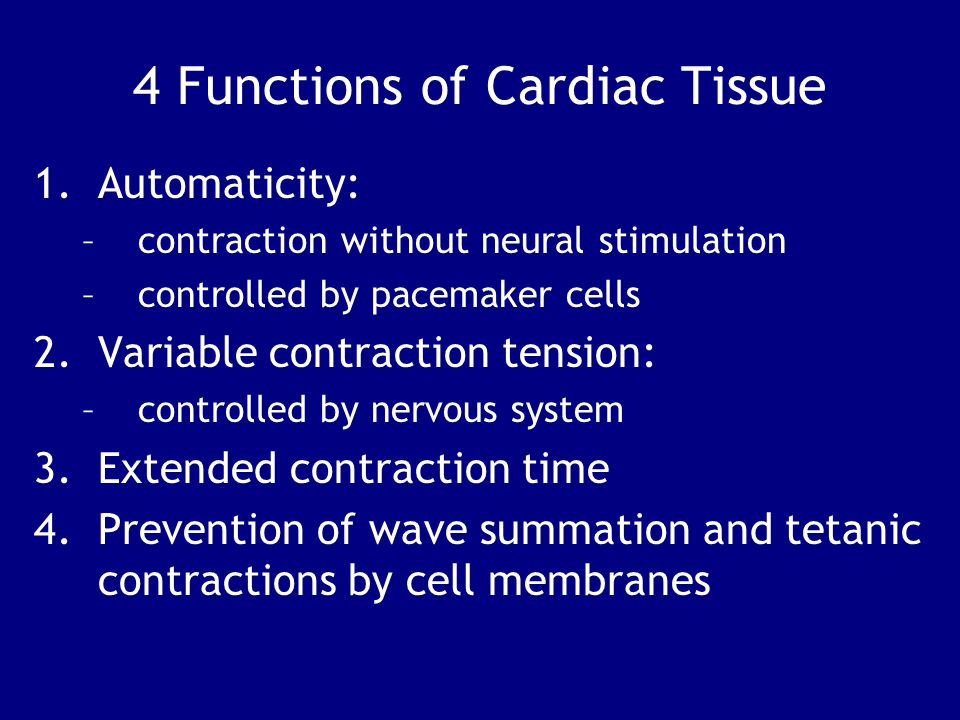 4 Functions of Cardiac Tissue 1.Automaticity: –contraction without neural stimulation –controlled by pacemaker cells 2.Variable contraction tension: –controlled by nervous system 3.Extended contraction time 4.Prevention of wave summation and tetanic contractions by cell membranes