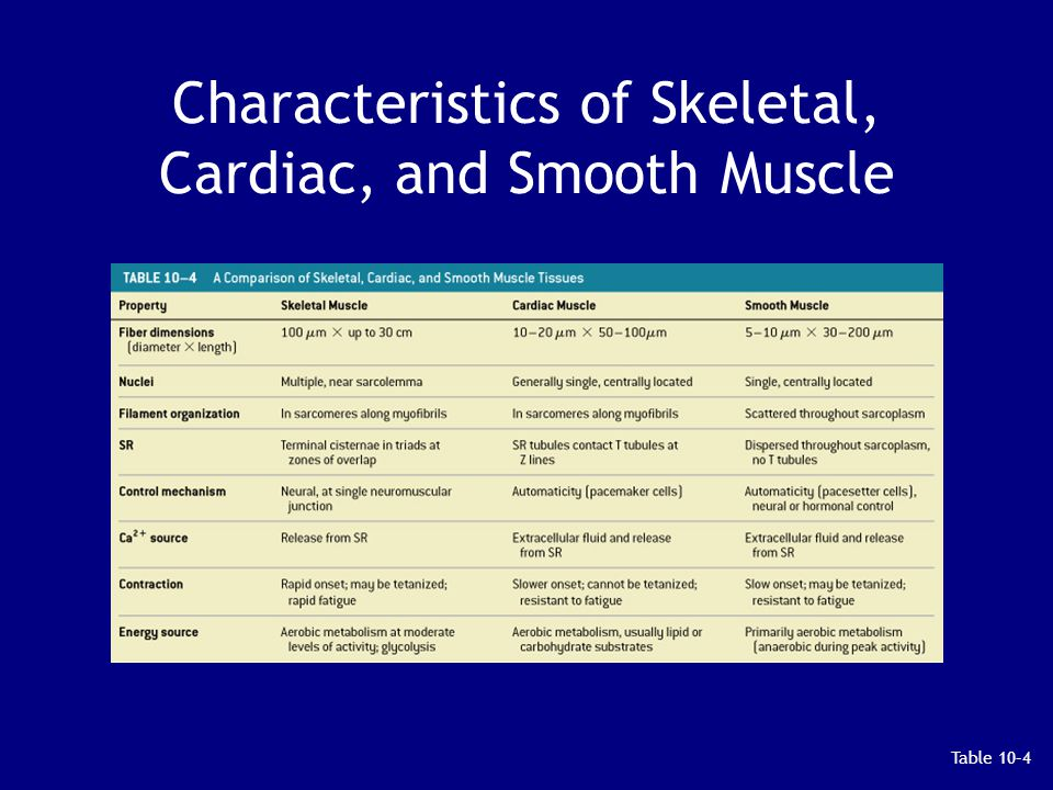 Characteristics of Skeletal, Cardiac, and Smooth Muscle Table 10–4