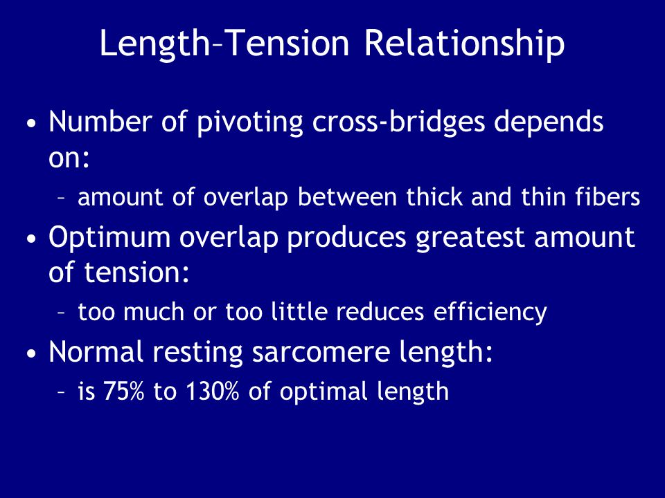 Length–Tension Relationship Number of pivoting cross-bridges depends on: –amount of overlap between thick and thin fibers Optimum overlap produces greatest amount of tension: –too much or too little reduces efficiency Normal resting sarcomere length: –is 75% to 130% of optimal length