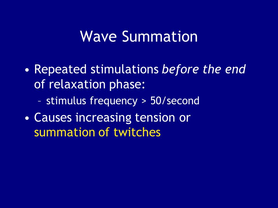 Wave Summation Repeated stimulations before the end of relaxation phase: –stimulus frequency > 50/second Causes increasing tension or summation of twitches