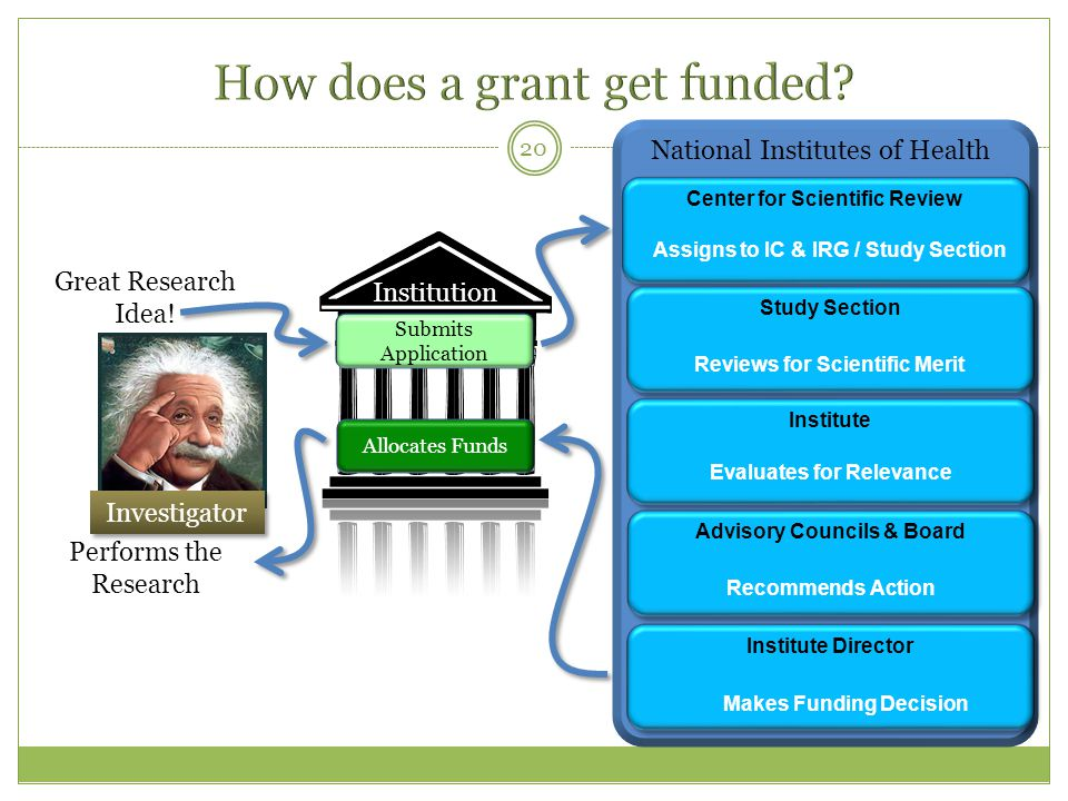 National Institutes of Health Center for Scientific Review Performs the Research 20 Institution Investigator Great Research Idea.