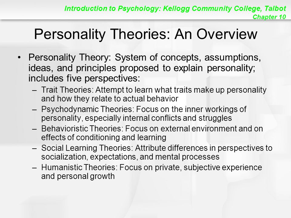 personality theories paper
