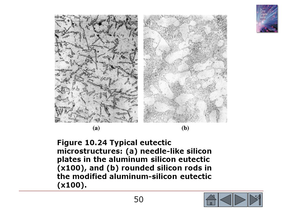 50 Figure 10.24 Typical eutectic microstructures: (a) needle-like silicon plates in the aluminum silicon eutectic (x100), and (b) rounded silicon rods