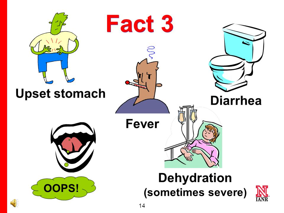 13 Myth 3 The worst that could happen to you with a foodborne illness is an upset stomach.