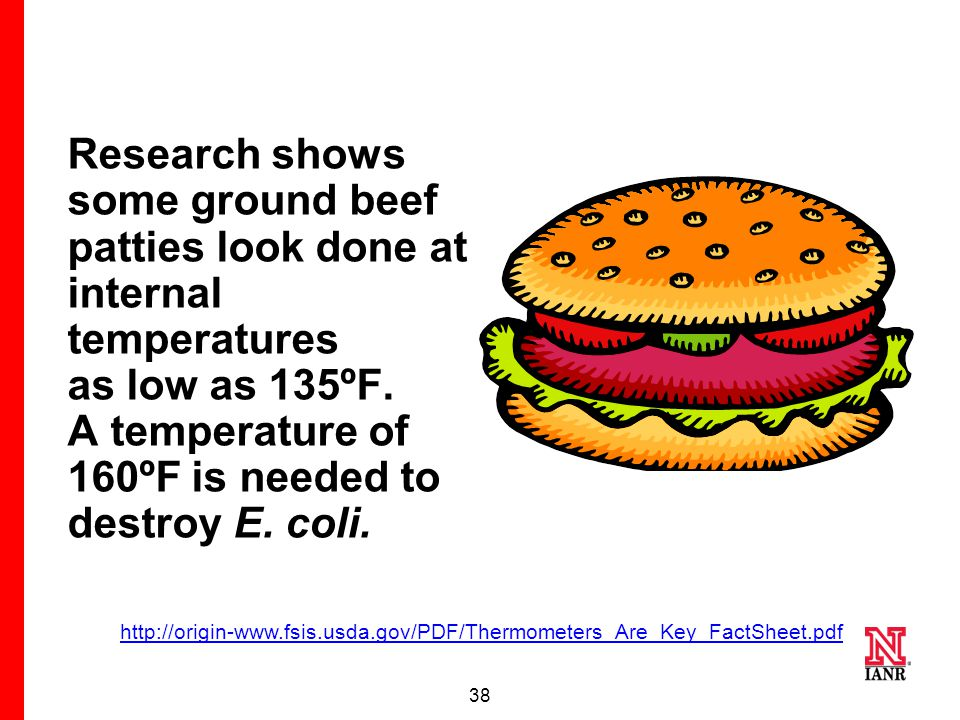 37 This IS a safely cooked hamburger (internal temperature of 160ºF) even though pink inside.