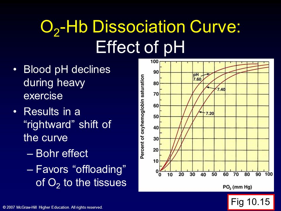 © 2007 McGraw-Hill Higher Education. All rights reserved. O 2 -Hb Dissociation Curve: Effect of pH Blood pH declines during heavy exercise Results in