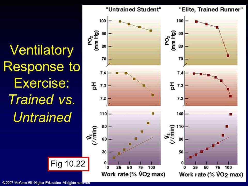 © 2007 McGraw-Hill Higher Education. All rights reserved. Ventilatory Response to Exercise: Trained vs. Untrained Fig 10.22