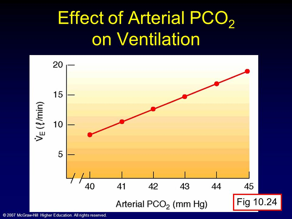 © 2007 McGraw-Hill Higher Education. All rights reserved. Effect of Arterial PCO 2 on Ventilation Fig 10.24