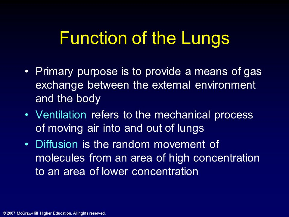 © 2007 McGraw-Hill Higher Education. All rights reserved. Function of the Lungs Primary purpose is to provide a means of gas exchange between the exte