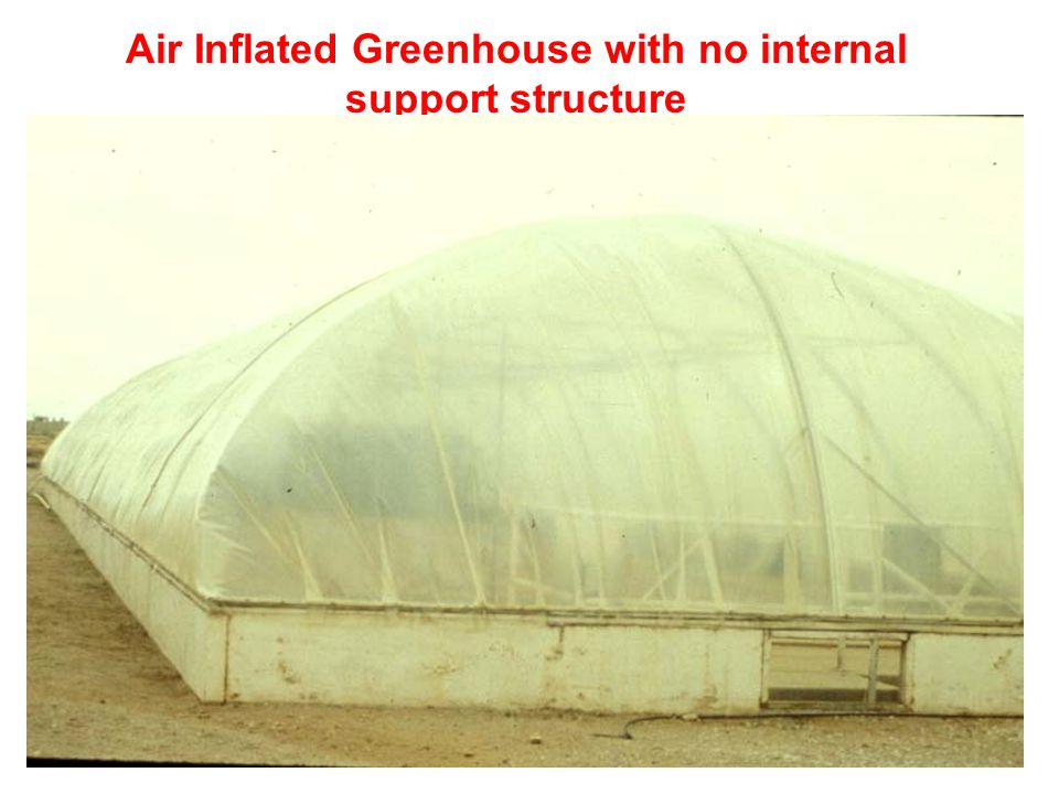 Air Inflated Greenhouse with no internal support structure