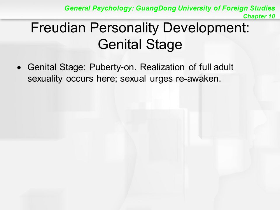 General Psychology: GuangDong University of Foreign Studies Chapter 10 Freudian Personality Development: Genital Stage  Genital Stage: Puberty-on.