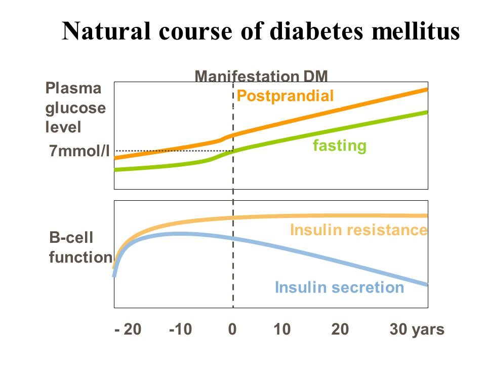 - 20 -10 0 10 20 30 yars Manifestation DM 7mmol/l Plasma glucose level Β-cell function Postprandial fasting Insulin resistance Insulin secretion Natural course of diabetes mellitus