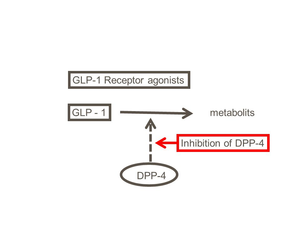 GLP - 1 metabolits DPP-4 Inhibition of DPP-4 GLP-1 Receptor agonists