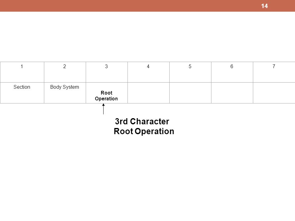 1234567 SectionBody System Root Operation 3rd Character Root Operation 14