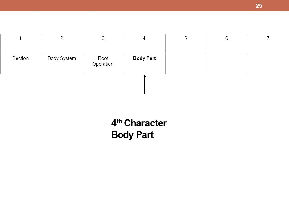 4 th Character Body Part 1234567 SectionBody SystemRoot Operation Body Part 25