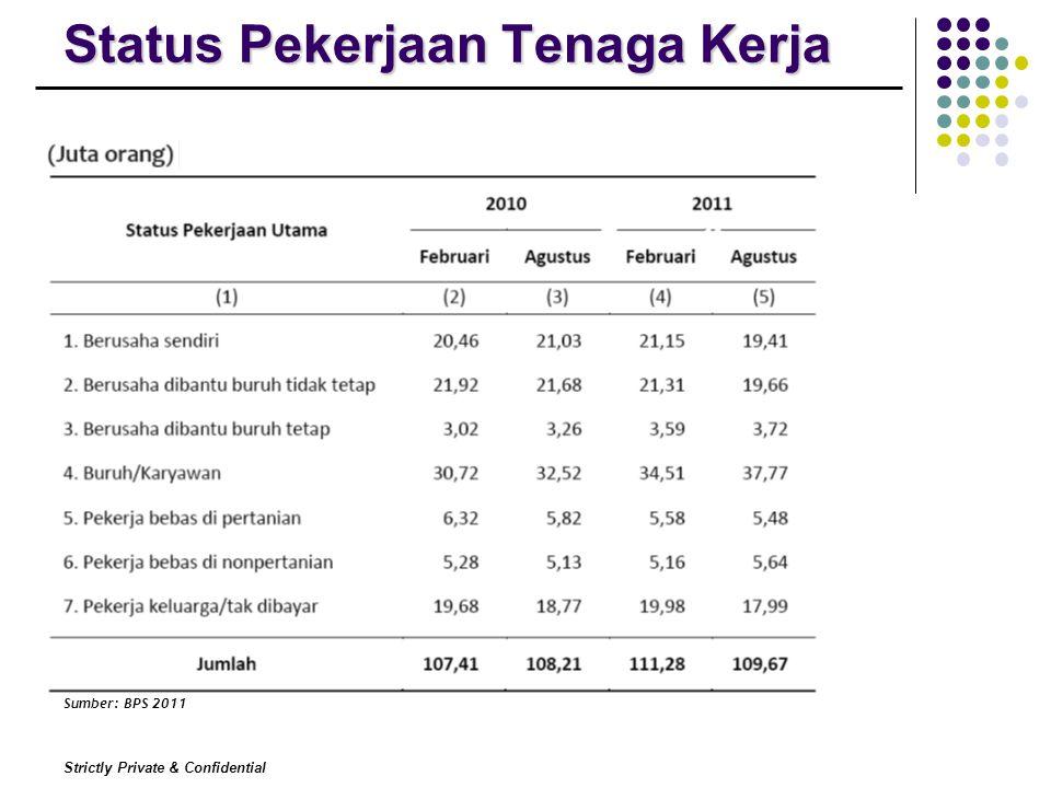 Strictly Private & Confidential Status Pekerjaan Tenaga Kerja Sumber: BPS 2011