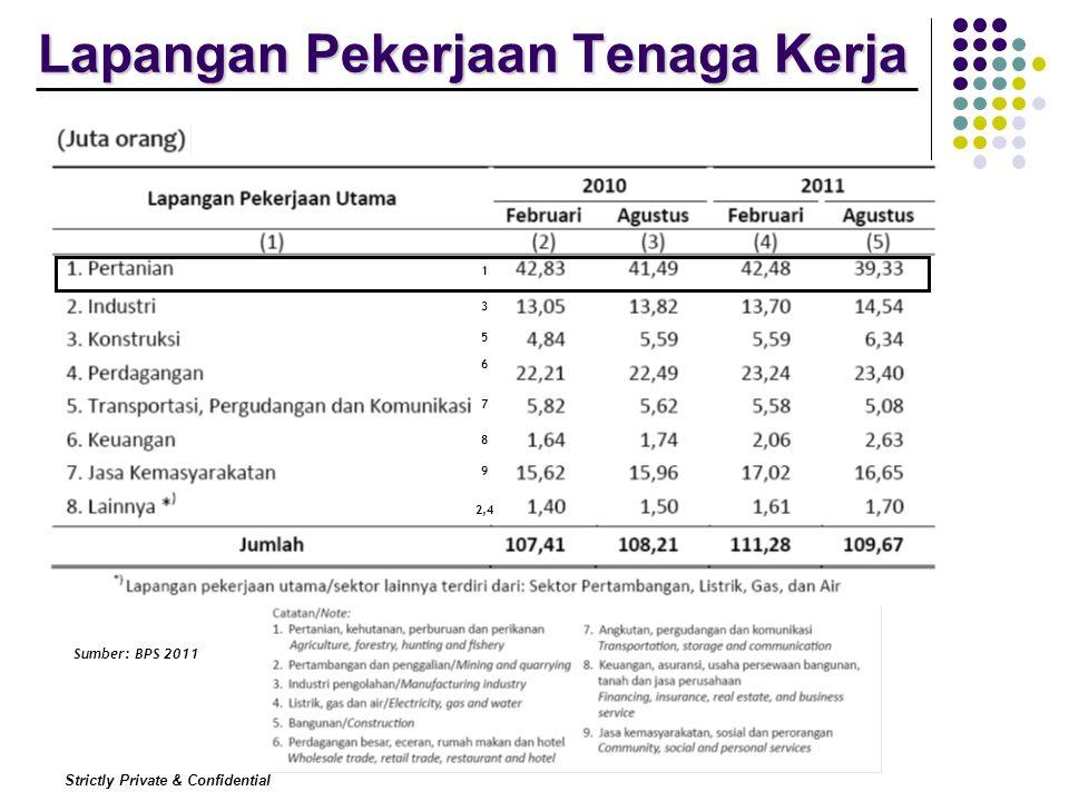 Strictly Private & Confidential Lapangan Pekerjaan Tenaga Kerja Sumber: BPS 2011 1 3 5 6 7 8 9 2,4