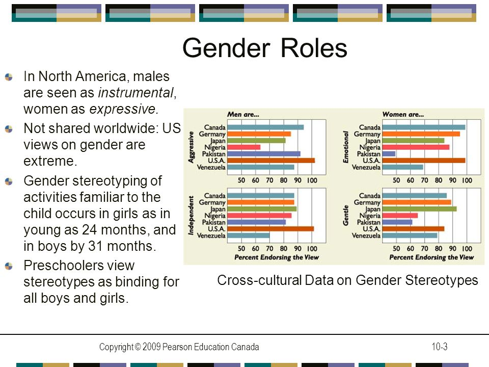 Copyright © 2009 Pearson Education Canada10-3 Gender Roles In North America, males are seen as instrumental, women as expressive.