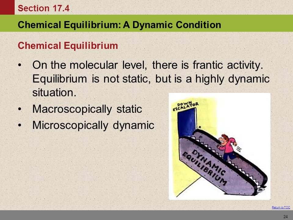 Section 17.4 Chemical Equilibrium: A Dynamic Condition Return to TOC 24 Chemical Equilibrium On the molecular level, there is frantic activity. Equili