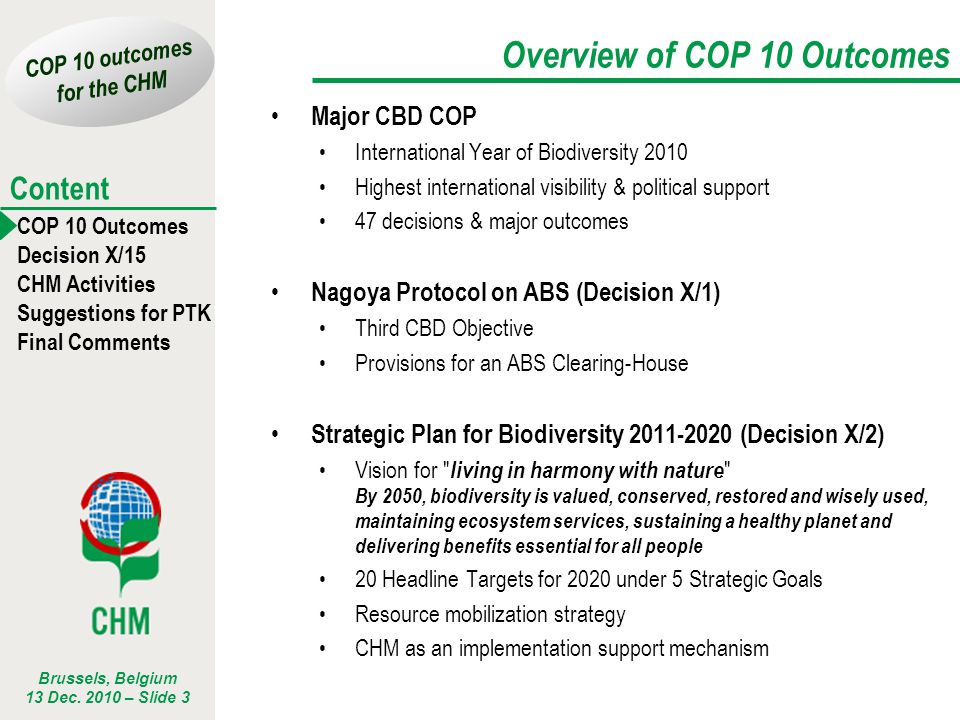 COP 10 outcomes for the CHM COP 10 Outcomes Decision X/15 CHM Activities Suggestions for PTK Final Comments Content Brussels, Belgium 13 Dec.