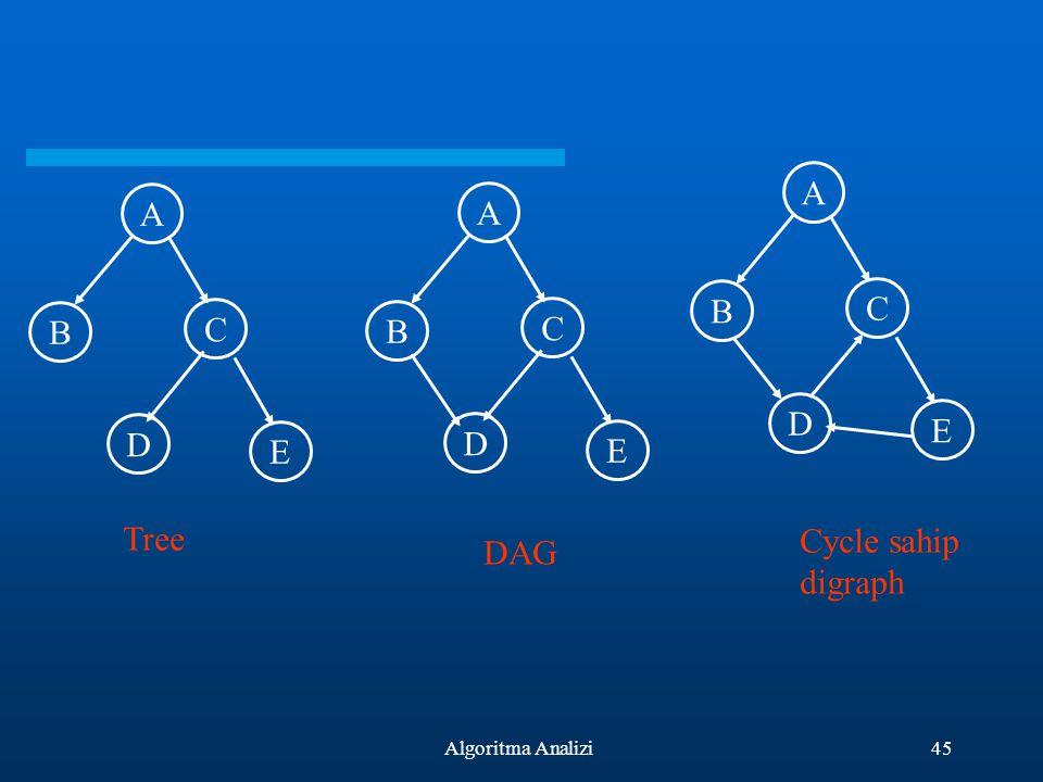 45Algoritma Analizi A B C D E A B C D E A B C D E Tree DAG Cycle sahip digraph
