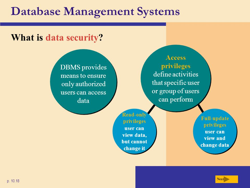 Database Management Systems What is data security? p. 10.18 Next Read-only privileges user can view data, but cannot change it Read-only privileges us