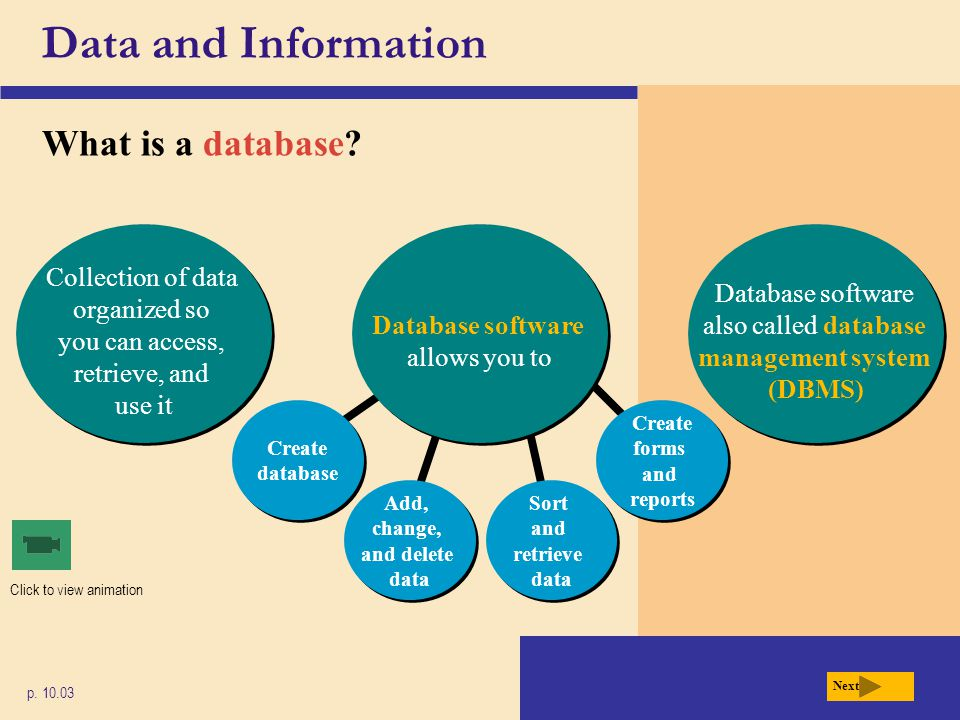 Add, change, and delete data Create database Sort and retrieve data Create forms and reports Data and Information What is a database? p. 10.03 Next Da